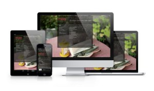 Responsive-showcase-mooi