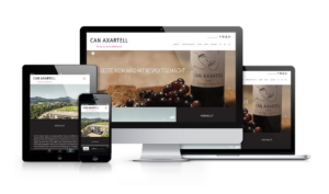 Website Responsive-showcase-Can-Axartell